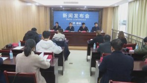 广东汕尾市:做优做强茶树菇产业 建立茶树菇产业扶贫基地