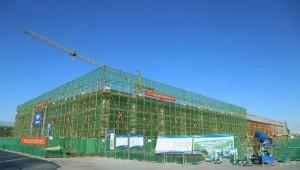 打造国内大规模2万吨年工厂化鹿茸菇建设项目