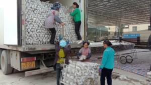 贵州册亨县秧坝镇黑木耳产业助力群众脱贫增收