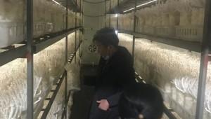 福建省古田县食用菌产业发展中心科技服务团队深入基层 考察食用菌产业