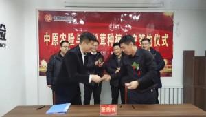 中原农业保险入驻黑龙江省讷河市 助力赤松茸产业发展