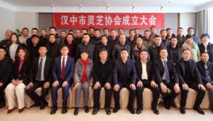 陕西省汉中市灵芝协会第一届一次会员大会暨协会成立大会顺利举行