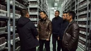 贵州省黄平县委书记林昌富深入浪洞镇调研食用菌产业发展情况