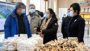 实地考察食用菌产业园后,广东省农业农村厅考察组这样说