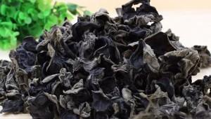 湖北省房县:盛产黑木耳 品质优良