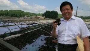 食用菌也能被制成冰激凌?中国工程院院士李玉:已经安排上了!