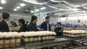 广东省韶关市星河生物发挥科技优势,助力北部食用菌生态发展区建设