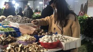 野生菌在湖南省長沙市大量上市 黑松露每斤售價399元
