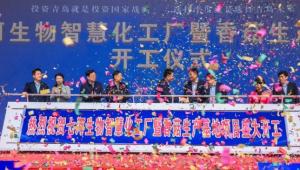 總投資6.2億元!七河生物智慧化工廠暨香菇菌棒生產基地項目開工儀式在蓼蘭鎮舉行