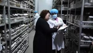 河南灵宝昌盛食用菌有限责任公司:助推乡村振兴,龙头示范引领提档增速