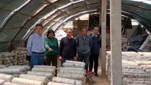 北京林业大学戴玉成教授前往河南省三门峡市指导野生菌类调查工作