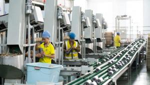 贵州省印江县:小菌棒成就大产业 助力乡村振兴