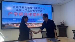 黑龍江省西部食用菌研究院與延安大學生命科學學院產學研合作座談會順利舉行