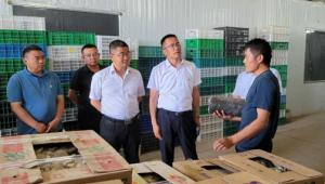 甘肅省古浪縣召開食用菌產業現場觀摩推進會議