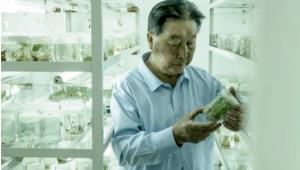 全國優秀共產黨員、菌草技術發明人林占熺:為生態扶貧奮斗終生