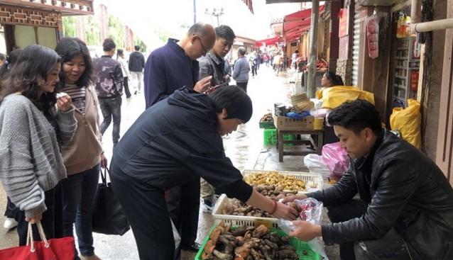 四川省康定市郭达农贸市场牛肝菌、白菌等野生食用菌已小批量上市