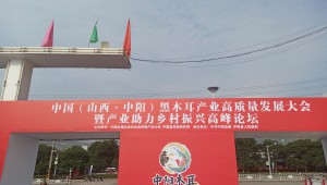 中國(山西·呂梁·中陽)黑木耳產業高質量發展大會準備就緒