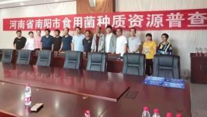 河南省南阳市全面展开大宗野生菌类种质资源普查
