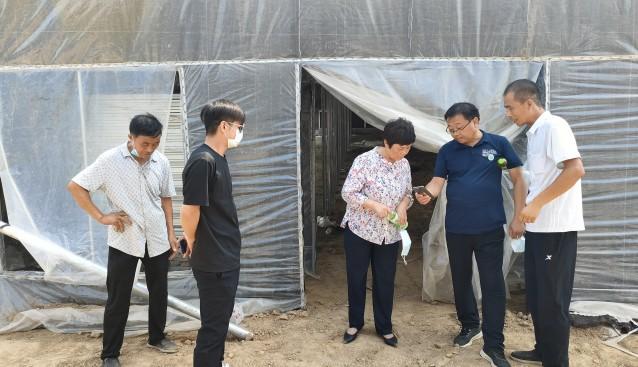 河南省清豐縣食用菌產業服務中心工作人員深入基地查看項目建設進度