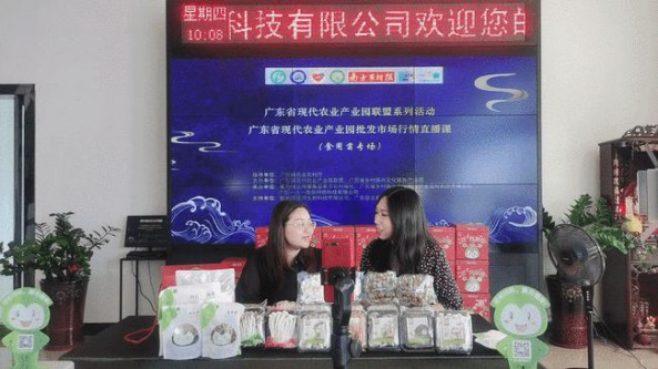 廣東省知名食用菌產業園內品牌文化直播廣受好評
