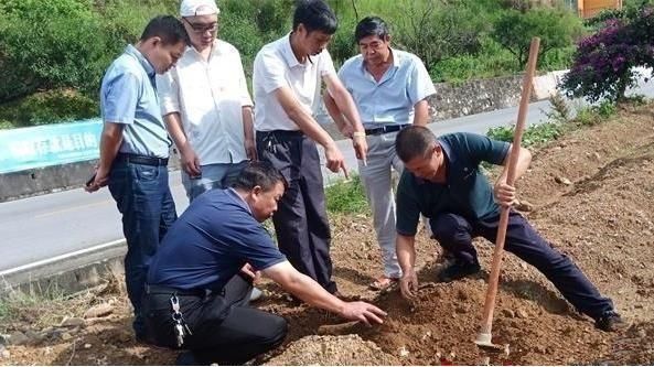 河南省淮濱縣工信局精準服務為食用菌企業賦能 助力企業高質量發展