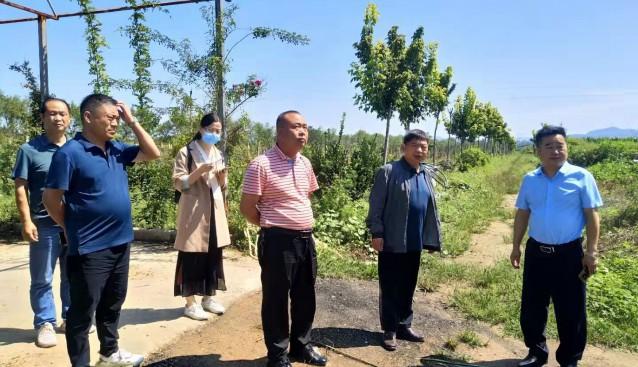 河南省安阳市农业农村局领导带队前往三门峡九龙山公司考察羊肚菌种植项目