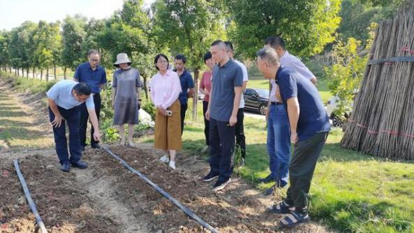 湖北省蔬菜辦副主任周雄祥率專家團隊調研指導鄖陽區食用菌產業發展