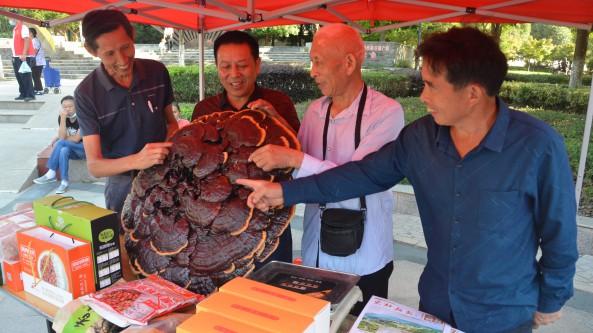 湖北省随州市食用菌协会组织食用菌企业参加科普日活动
