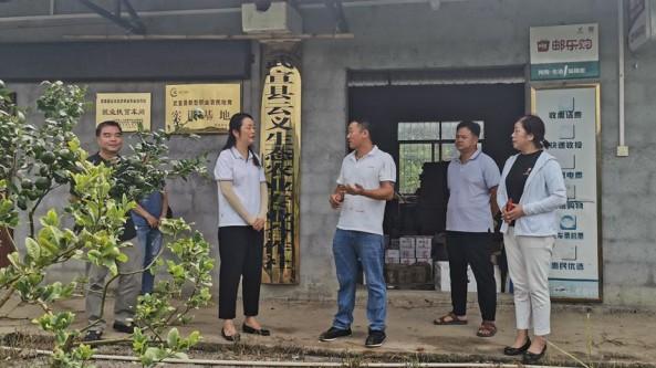 广西壮族自治区农业技术推广站前往来宾市开展食用菌生产调研任务