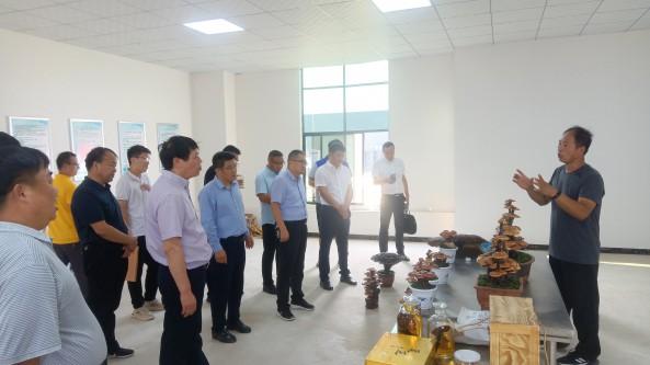 河南省商丘市合作社质量提升会议在金隆菇业顺利举行